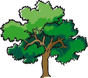 generic tree for logo development